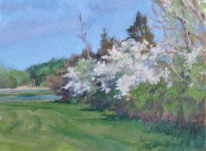 Painting by Judy Ryan